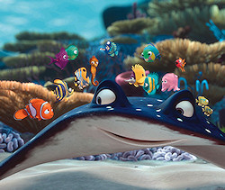 Finding Nemo promotional photo