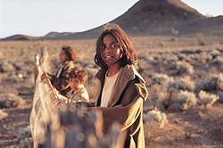 Rabbit Proof Fence promotional photo