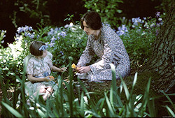 The Hours promotional photo