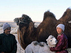 The Story of the Weeping Camel promotional photo